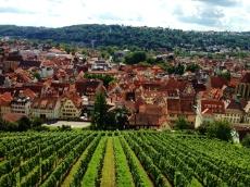Esslingen Wine View