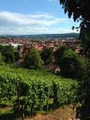 Esselingen Wine