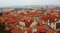 Prague forbetterorwurst.com