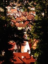 Tubingen forbetterorwurst.com