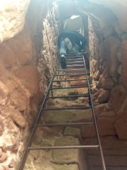 Ladder Dahn