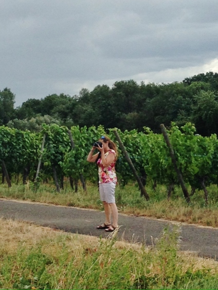 mom on wine road france