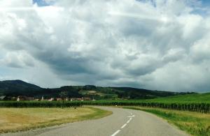 alsace wine road forbetterorwurst.com