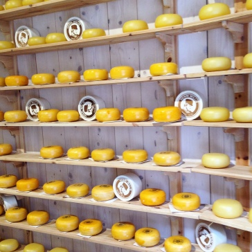 cheese Amsterdam forbetterorwurst.com